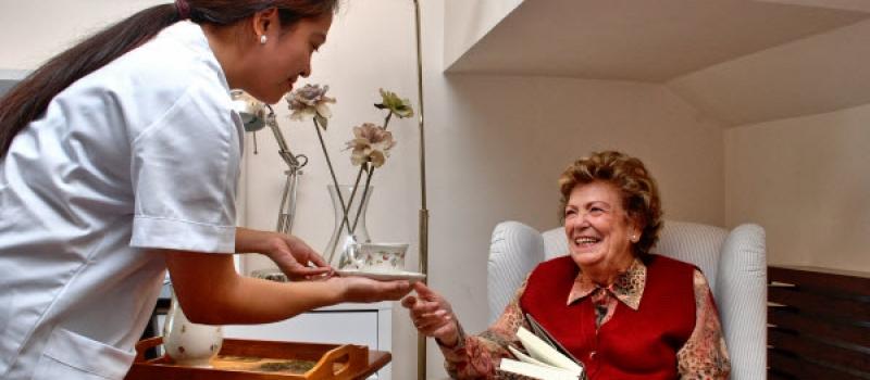 Dama de companhia para supervisão de idosa e apoio nas tarefas domésticas.